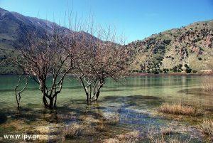 Λίμνη-Κουρνά
