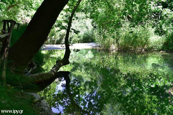 το ποτάμι του νεραϊδόπηλιου