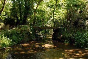 ποταμός Απόλλωνας