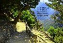 Δάσος παλαιάς ανάπτυξης - Mount Scenery